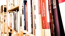 Eine kleine Bibliothek: regional und antifaschistisch